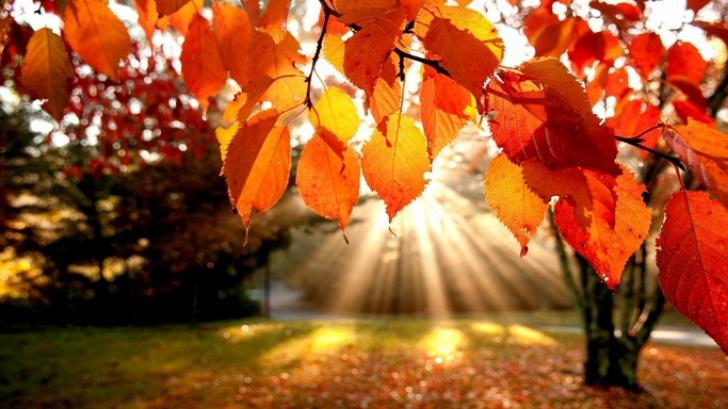 23 septembrie, ECHINOCŢIUL de toamnă. Cum influenţează viaţa zodiilor