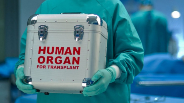"""Şefa Agenţiei de Transplant, sesizare la DIICOT: """"Vieţile pacienţilor au fost puse în pericol"""""""