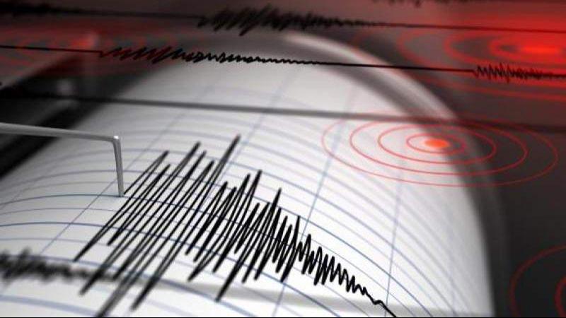 Cutremure de peste 5 grade pe Richter, în mai multe ţări