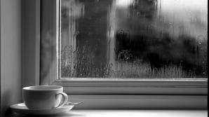 5 lucruri pe care nu le spune nimeni despre cafea