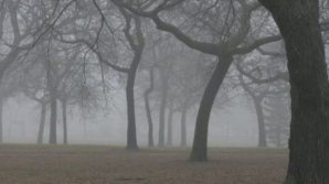 Alertă meteo: cod GALBEN de ceaţă