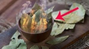 Ce se întâmplă dacă arzi câteva frunze de dafin în cameră