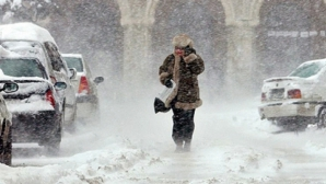 A venit iarna! COD PORTOCALIU de NINSORI în România
