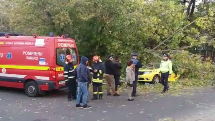 Vântul face victime în București! Un bărbat rănit grav, după ce un copac a căzut peste mașina sa