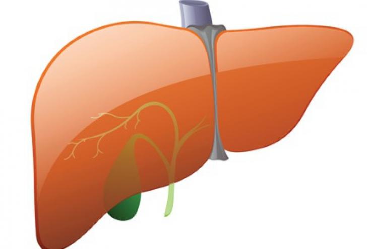 Cum poţi reduce riscul bolilor de ficat