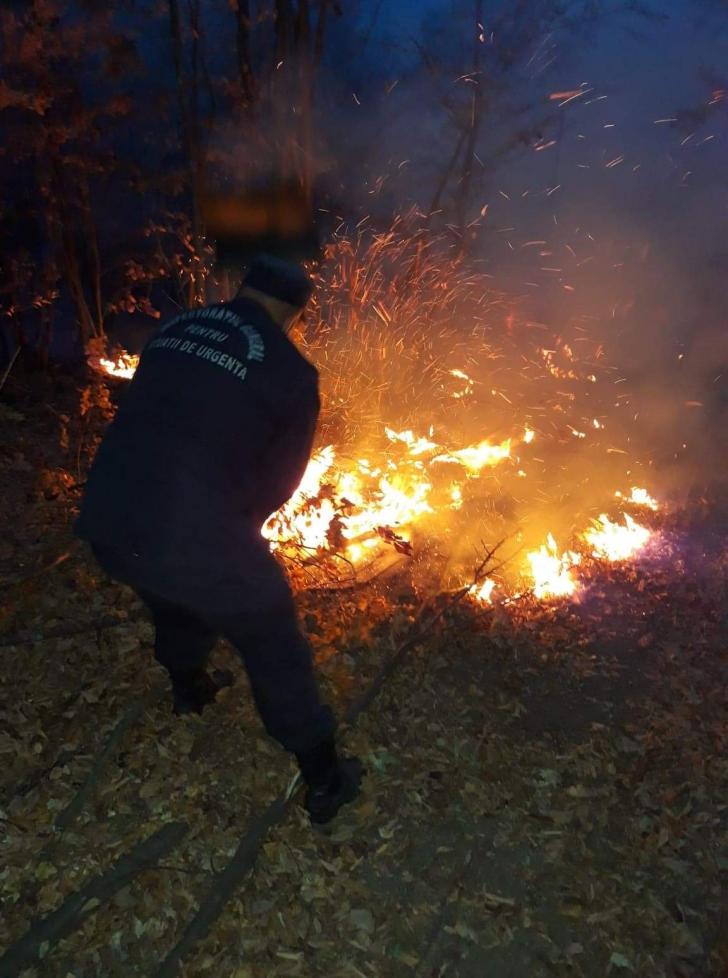 Incendiu de pădure în Argeş