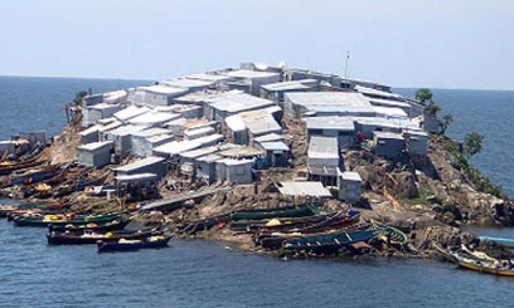 <p>Secretul insulei Migingo</p>
