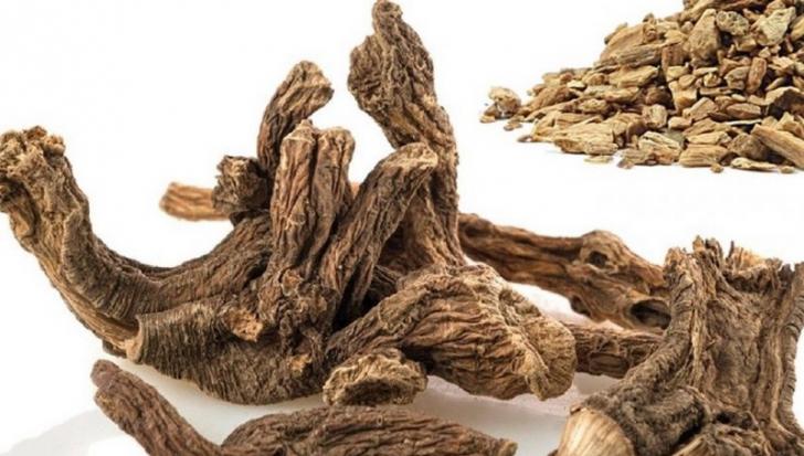 Rădăcina cu rezultate deosebite în tratarea bolilor de ficat