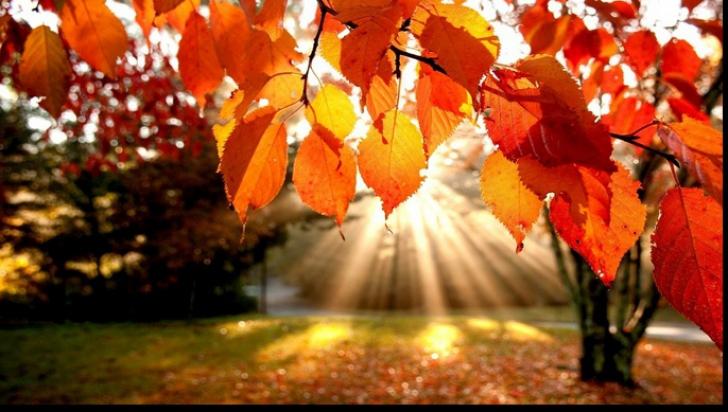 Se întoarce VARA? Temperaturi de 27 de grade la finele lunii octombrie!