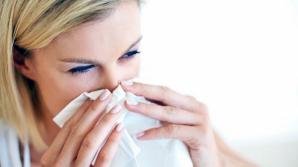 Alergia la praf: simptome