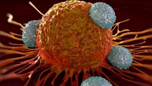 Medicii trag un semnal de alarmă: Lipsa acestei vitamine duce la apariţia cancerului!