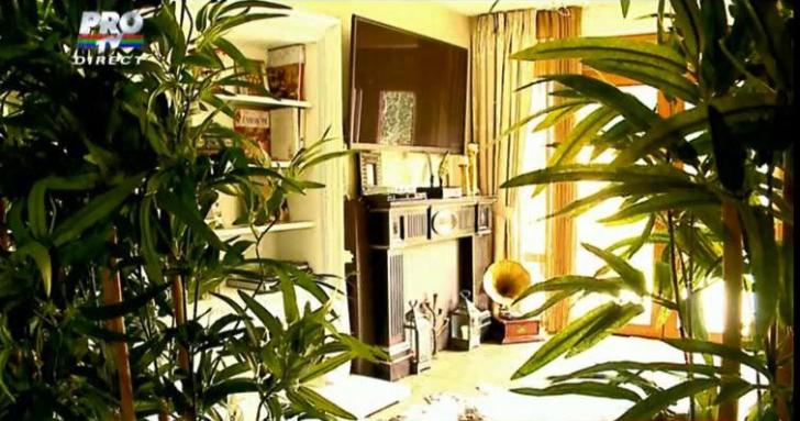 Cum arată casa în care locuiește Andreea Marin