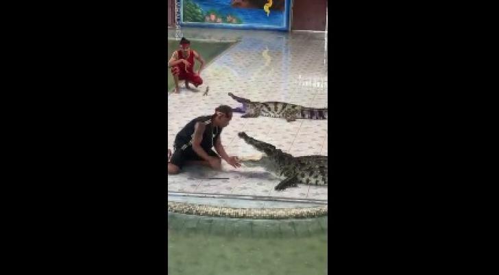 Ce a păţit acest bărbat care a decis să-şi bage mâna în gura crocodulului depăşeşte orice imaginaţie