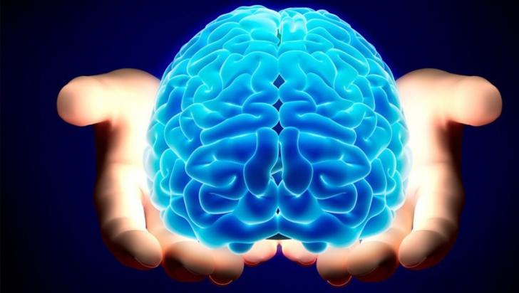 Cât timp funcționează creierul uman după moarte