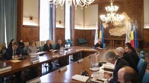 Dăncilă: Vom prelua preşedinţia Consiliului UE cu un blocaj. Apelul la consens nu e acceptat de toţi / Foto: Inquam Photos / Octav Ganea
