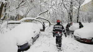Copaci căzuţi peste maşini și fire de curent în municipiul Satu Mare. Au intervenit pompierii