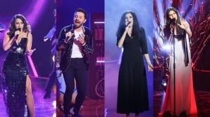Vocea României, sezon 8