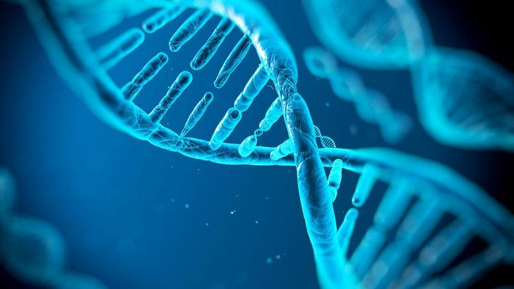 Ce poate schimba ADN-ul uman. Detaliul şocant descoperit de cercetători