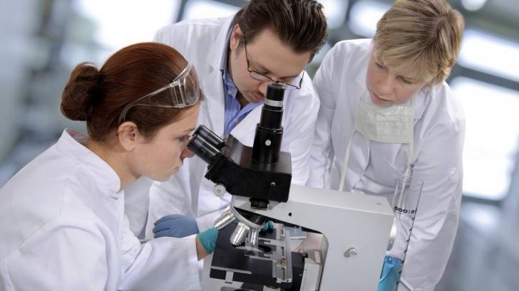 Descoperire FASCINANTĂ făcută de cercetători