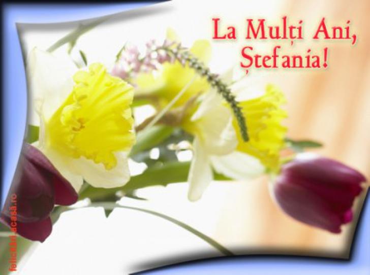 Mesaje de Sf Stefan
