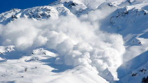 Avalanse Alpi