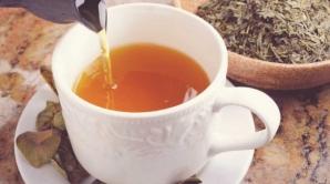 Ceaiul care distruge pietrele la rinichi într-o singură zi