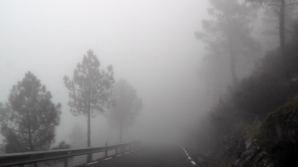ALERTĂ METEO. Cod GALBEN de ceață și vânt, în Capitală și mai multe județe din țară. HARTA
