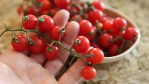 Adevărul despre roşiile cherry din supermarketuri. Ce sunt de fapt. Mai cumperi?