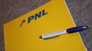 Ce pedeapsă a primit liderul PNL care spunea că votează cu PSD dacă emite OUG pe amnistie