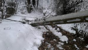 Vremea rea a lăsat 120.000 de case fără curent