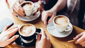 Am putea rămâne fără cafea. Majoritatea speciilor se află în pericol de dispariţie