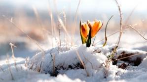 Prognoza meteo a fost revizuită. Schimbări spectaculoase: cum va fi vremea până pe 18 februarie