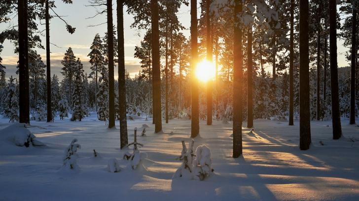 Prognoza meteo luna februarie 2019. Temperaturi peste normele perioadei