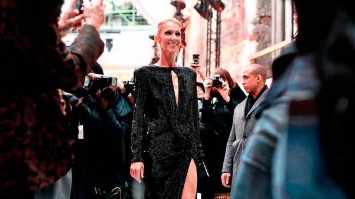 Celine Dion, film biografic făcut de francezi