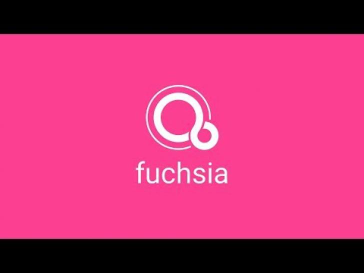 GOOGLE Fuchsia. Noul sistem de operare de la Google se numeşte Fuchsia şi înlocuieşte Android