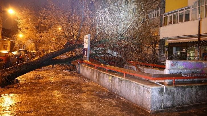 Bilanț de coșmar după ploaia de gheață din Capitală și Ilfov. ISU: 115 intervenţii în 10 ore