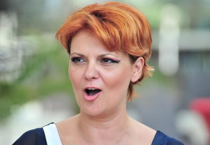 Olguța Vasilescu, replică acidă pentru Iohannis