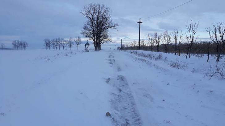 Se închid drumurile din județul Sibiu din cauza vântului și a zăpezii viscolite