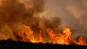 Incendiu violent în Bangladesh: cel puțin 70 de morți / Foto: Arhivă