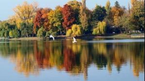 Descoperire șocantă în Lacul Herăstrău