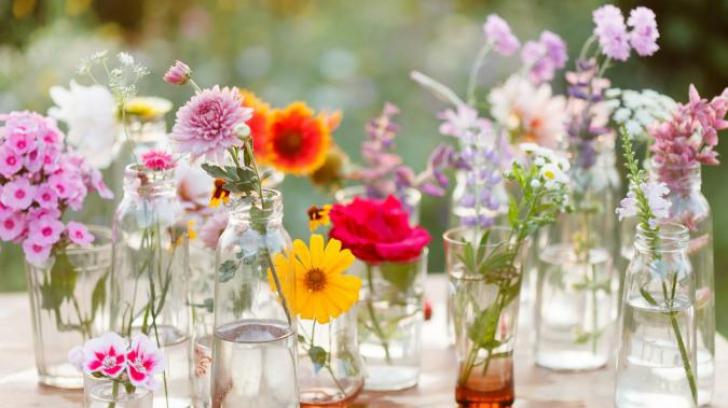 1 MARTIE 2019. Mesajul ascuns al florilor pe care le primești
