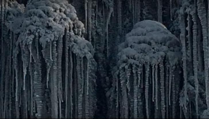Zăpadă neagră în Siberia