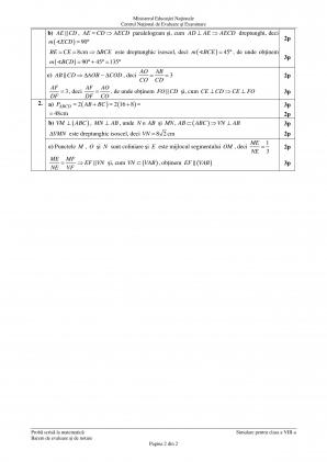 barem simulare matematica 2019 clasa a 8 a