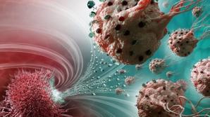 Leguma banală care poate distruge 14 tipuri de celule canceroase