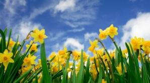 Primăvară cu temperaturi de vară: Maxima zilei va fi de 26 de grade