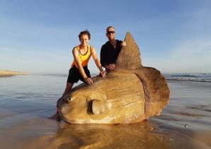 Peștele Lună, găsit pe o plajă din Australia