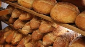Motive pentru a manca mai multa paine