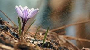 Prognoza meteo a fost revizuită. Schimbări neașteptate: cum va fi vremea până pe 29 aprilie