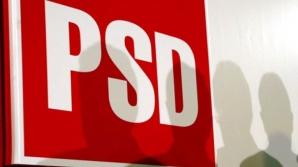 Strategie PSD pentru referendum