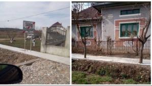 Copaci îngropați în ciment, într-o comună din Sălaj / Foto: bihon.ro